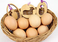 Free Easter Decorations Royalty Free Stock Photography - 23969687