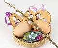 Free Easter Decorations Royalty Free Stock Photo - 23969705
