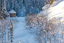 Small House In Winter Forest Royalty Free Stock Image