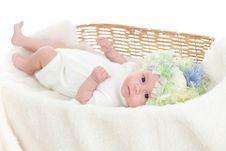Newborn Baby Weared A Cap In A Wicker Basket Stock Photo