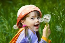 Free Funny Girl With Dandelions Stock Photos - 23966903