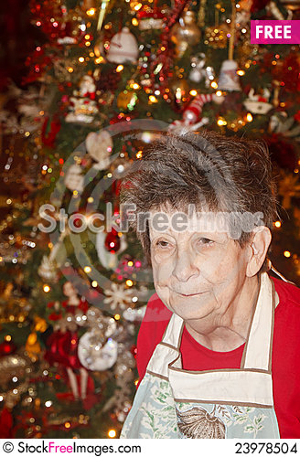 Free Grandmother At Christmas Stock Images - 23978504