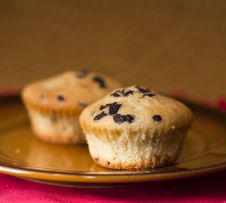 Free Muffins Stock Photos - 23975253