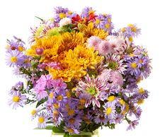 Colourful Chrysanthemums  Bunch Royalty Free Stock Photo
