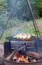 Free Food On A Grill Stock Photography - 23980202