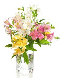 Free A Bouquet Stock Photos - 23980143