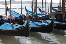 Free Venice,Italy Royalty Free Stock Photo - 23981255