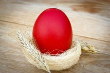 Free Easter Egg Royalty Free Stock Photo - 23982365