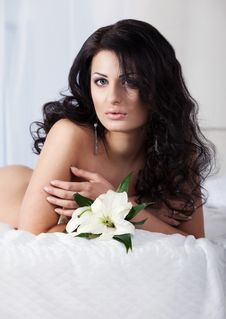 Free Beautiful Young Woman On The Bed Royalty Free Stock Photo - 23983595
