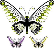 Free Butterflies Royalty Free Stock Image - 23987846
