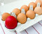 Free Red Easter Egg Stock Images - 23994454