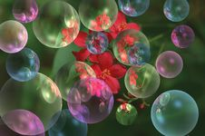 Free Colorful Bubbles Stock Image - 240041