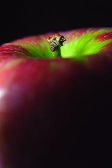 Free Apple Closeup Stock Photos - 241823