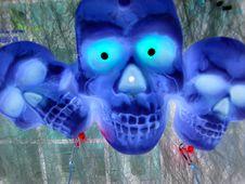 Free Skulls 2 , Negative Royalty Free Stock Photos - 246448