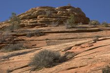 Free Canyon Landscape - Zion Stock Photo - 249270