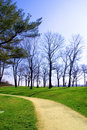 Free Footpath Through The Park. Royalty Free Stock Photo - 2400805