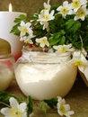 Free Cream With White Flowers Stock Photo - 2402040