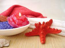 Free Salt, Candle, Seashells Royalty Free Stock Photography - 2401747