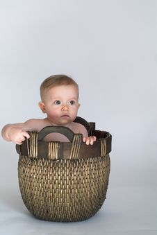 Free Basket Baby Stock Images - 2407724