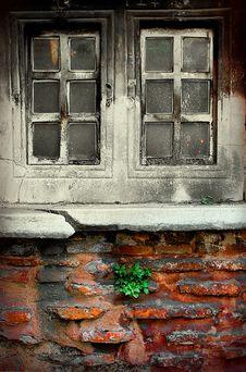 Free No Window Box Needed Royalty Free Stock Photo - 2408095