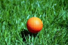 Free An Orange Golf Ball Royalty Free Stock Images - 2409759