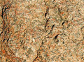 Free Natural Stone Surface. Stock Photos - 24000423