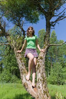 Free Portrait Of The Girl On A Tree Stock Photography - 24000462