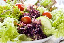 Free Salad Close Up Royalty Free Stock Images - 24007019
