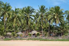View Of  Beach, Summer Houses And Palm Trees Royalty Free Stock Photos