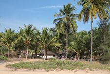 View Of  Beach, Summer Houses And Palm Trees Royalty Free Stock Image