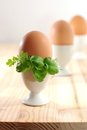 Free Eggs In Eggcups Royalty Free Stock Image - 24014346