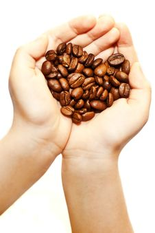 Coffee Beans In Children S Hands Stock Photo