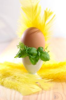 Free Egg In Eggcup Royalty Free Stock Photos - 24014338