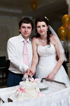 Free Bride And Groom Cuts The Wedding Cake Stock Photo - 24019370