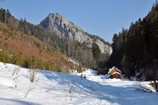 Winter In The Carpathians Royalty Free Stock Images