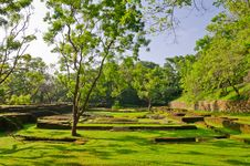 Free Ancient Ruins In The Vicinity Mount Sigiriya Stock Image - 24023381