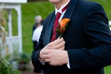 Free Groom Corsage Stock Photos - 24024933