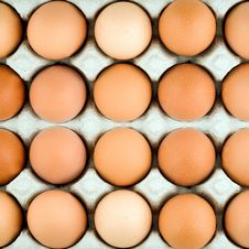 Free Chicken Egg Background Stock Image - 24028631