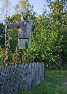 Free Scarecrow Stock Image - 24028851