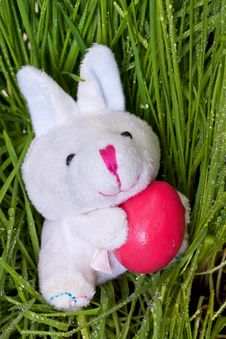 Free Bunny Holding An Easter Egg Stock Photo - 24033270