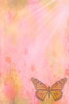 Free Color Butterflies Letter Stock Images - 24035934