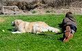 Free Resting Buddies Royalty Free Stock Image - 24043936