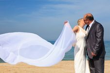 Free Beautiful Couple Kissing On The Beach Stock Photography - 24042102