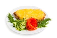Free Meat With Cheese And Vegetables Royalty Free Stock Image - 24045416