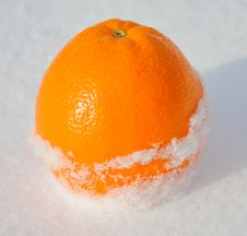 Free Citrus Orange In White Snow And With Sun Light Stock Image - 24047101