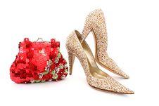 Free Elegant Handbag And Shoes For Women Royalty Free Stock Photos - 24048318