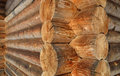 Free Wall Of The Rural House From Wooden Logs Royalty Free Stock Photos - 24055208