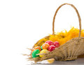 Free Basket With Colorful Eggs Royalty Free Stock Photo - 24055675
