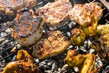 Free Chicken Wings On The Grill And Pork Royalty Free Stock Photography - 24053957