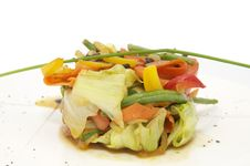 Free Vegetable Salad Stock Images - 24055454